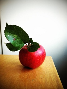 Äpple Stefan Svensson Flickr